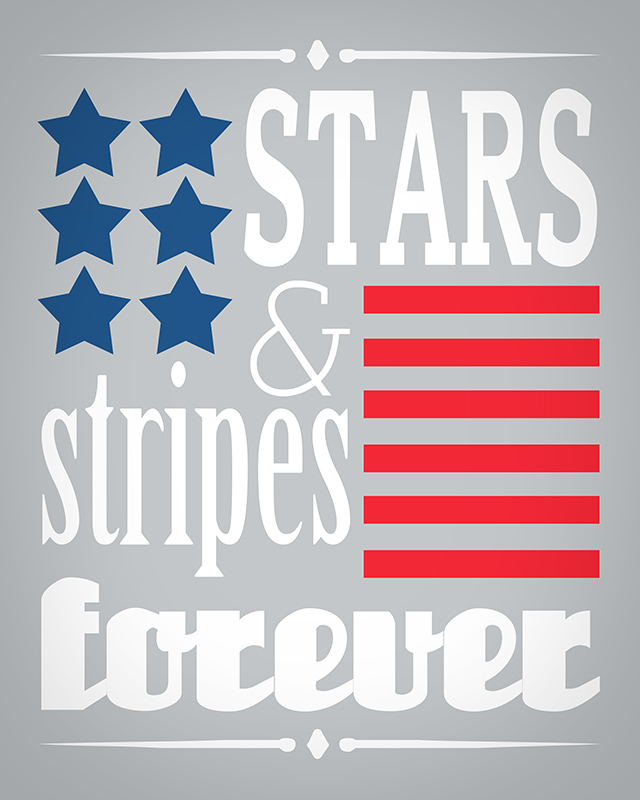 stars-&-stripes-grey