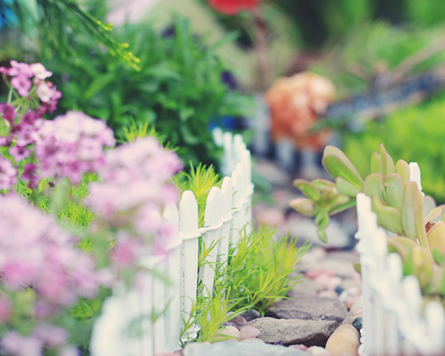 garden-edit