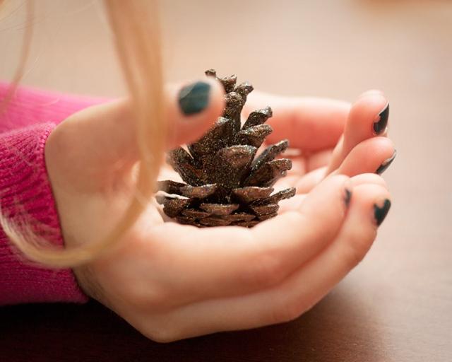 magic-pine-cone