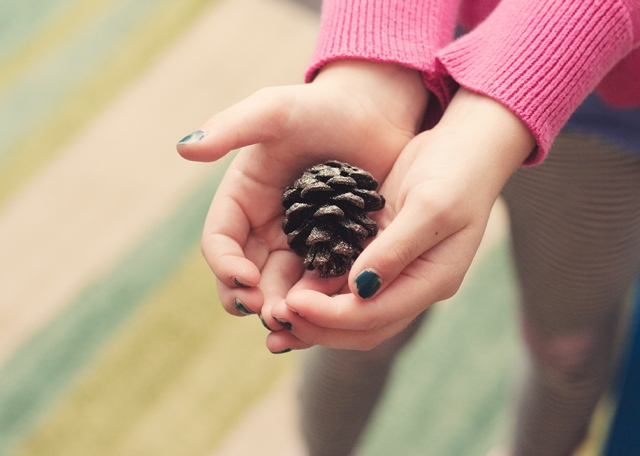 pine-cone-gift