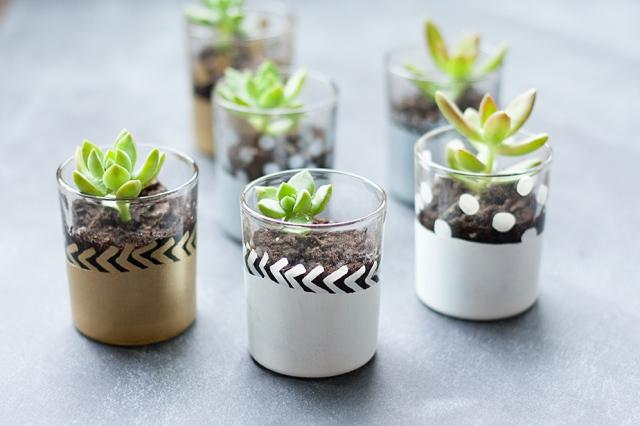 mini-succulent-planters