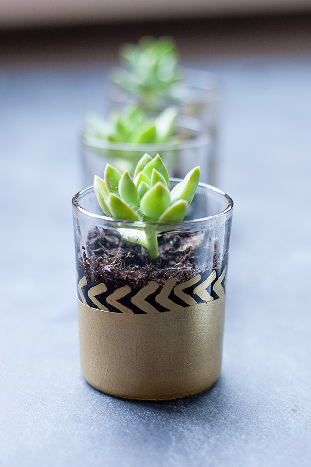 painted-mini-succulent-planter